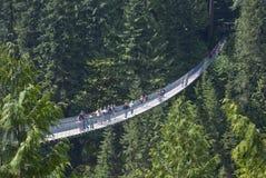 Capilano upphängningbro, Vancouver, British Columbia Royaltyfri Foto