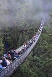 Capilano zawieszenia most zdjęcie stock