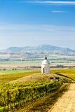 Capilla con el viñedo cerca de Velke Bilovice Imágenes de archivo libres de regalías