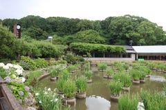 Capilla de Dazaifu donde tiene muchos árboles imágenes de archivo libres de regalías