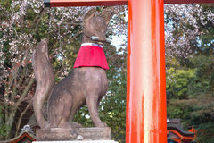 Capilla de Fushimi Inari en Kyoto, Japón Foto de archivo