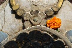 Capilla hindú con la flor anaranjada Imagen de archivo