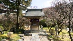 Capilla japonesa tradicional, templo sintoísta en Dazaifu Imágenes de archivo libres de regalías