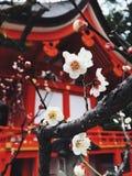 Capilla, Kyoto, Japón foto de archivo