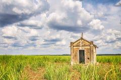 Capilla vieja abandonada dentro de una plantación de la caña de azúcar en el Brasil Foto de archivo libre de regalías