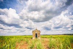 Capilla vieja abandonada dentro de una plantación de la caña de azúcar en el Brasil Fotografía de archivo