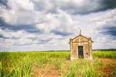 Capilla vieja abandonada dentro de una plantación de la caña de azúcar en el Brasil Imagen de archivo libre de regalías