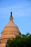 Capitólio dos E.U., Washington DC, E.U. Foto de Stock