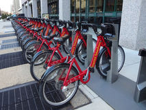 Capital BikeShare Bike Rack. Lines of bikes ready for use in Washington, DC royalty free stock image