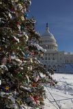 The Capital Christmas Tree Royalty Free Stock Photo