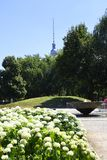 The Monbijou Park on the banks of the River Spree in Berlin Germanu stock images