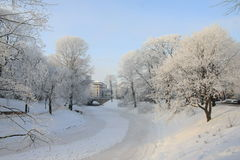 Capital city of Latvia Riga. Capital city of Latvia Riga in a cold winter day Royalty Free Stock Image