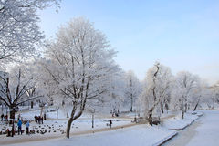 Capital city of Latvia. Riga in a cold winter day Royalty Free Stock Photography