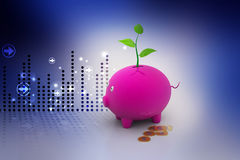 Capital growth concept Stock Photography