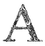 Capital Letter A - Calligraphic Vintage Swirly vector illustration
