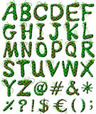 Capital letters of the alphabet in green color Stock Photos