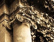 Capital overgrown foto de archivo