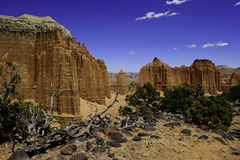 Capital Reef Royalty Free Stock Photo