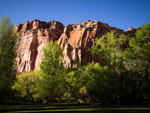Capital Reef Cliff. The Burr Trail takes the traveler into some of Utah`s most beautiful and extraordinary country.  Drive through Glen Canyon National Stock Photo