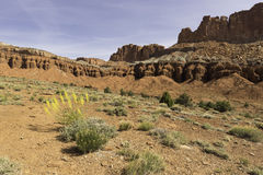 Capital Reef National Park in Spring Stock Photos