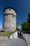 Capitale Eesti di Tallinn Estonia Immagini Stock