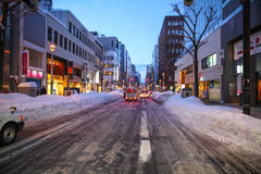 Capitale, Sapporo fotografia stock libera da diritti