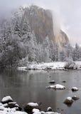 capitan snöig trees för el fotografering för bildbyråer