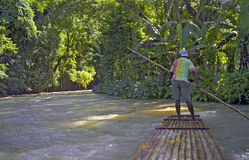 Capitano della zattera sul fiume - Ochos Rios Immagini Stock Libere da Diritti
