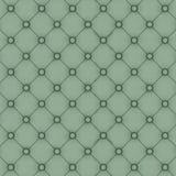 Capito verde della parete Immagine Stock