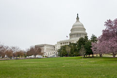 The Capitol Building Stock Photography