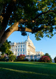Capitol Building in Washington DC. On summer afternoon Stock Photography