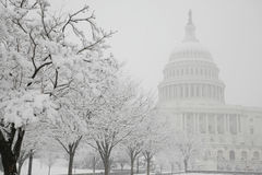 Capitol Building, winter, Washington, DC, USA Royalty Free Stock Photo