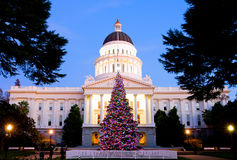 Capitol Christmas Tree Royalty Free Stock Photos