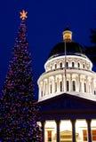 Capitol Christmas Tree. In Sacramento California Royalty Free Stock Photos