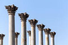 Capitol Columns In National Arboretum DC Stock Photography