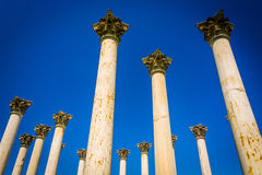 The Capitol Columns at the National Arboretum in Washington, DC. Stock Photos