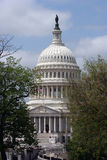 Capitol Dome Royalty Free Stock Images