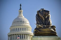 Capitol Dome against a lions`s statue Royalty Free Stock Photo