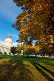 Capitol Foliage Stock Image
