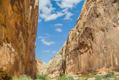 Capitol Gorge Canyon Royalty Free Stock Photo