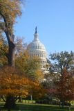 Capitol hill. The Capitol building in Washington DC in fall Royalty Free Stock Photography