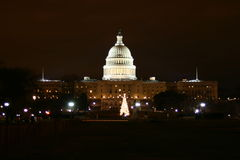Capitol Hill at night. With Christmas tree in front of it stock image