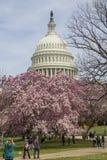 Capitol Hill på våren Arkivbilder