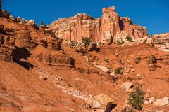 Capitol Reef Lands Royalty Free Stock Images