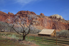 Capitol Reef National Park Stock Photos