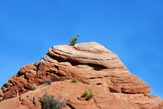Capitol Reef National Park Royalty Free Stock Images