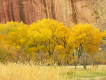 Capitol Reef National Park in a fall, Utah Royalty Free Stock Image
