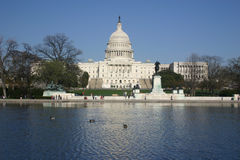 Capitol with reflection. National capitol with reflection in the reflecting pool in front of it. ducks in water. washington, dc. postcard worthy shot Royalty Free Stock Images