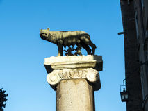 The Capitoline Hill with the statue the She Wolf with Romulus and Remus in Rome Italy stock images