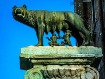 Capitoline Wolf Royalty Free Stock Image